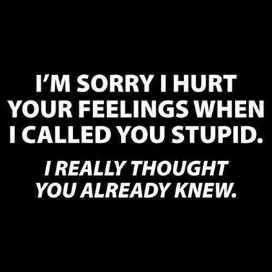 I am sorry I hurt your feelings when I called you stupid, I really thought you already knew it.